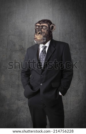 Anthropomorphous chimpanzee dressed and standing like a businessman - stock photo