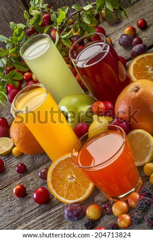 Antioxidant juices of citrus, apple, plum and blackberry - stock photo