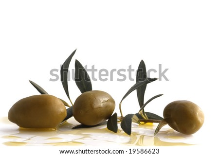 Antipasto - olives branch with olive oil on white