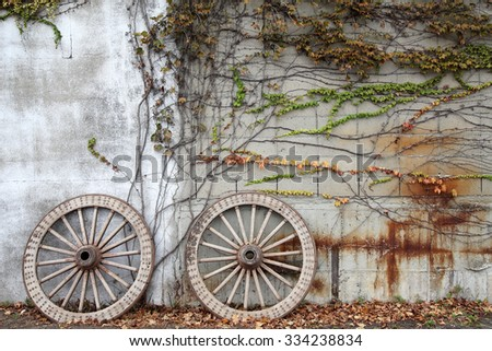 Antique and weathered wood cart wheel with vine - stock photo