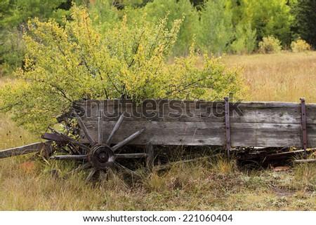 Antique Farm Wagon - stock photo