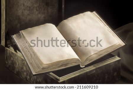 Antique open book. Two blank pages with original texture - stock photo