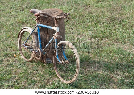 Antique or retro rusty bicycles outside. Child bike