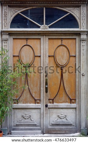 Antique Parisian wooden door with decorative details and plant