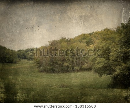 Antique photo of landscape with flying birds - stock photo