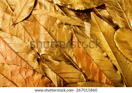 antique vintage golden leaves background abstract composition