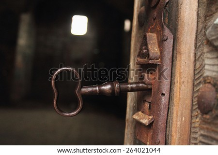 antique wooden doors of the ancient door lock