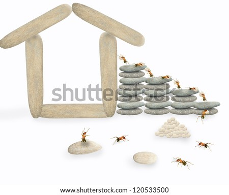 Ants build their own houses. - stock photo