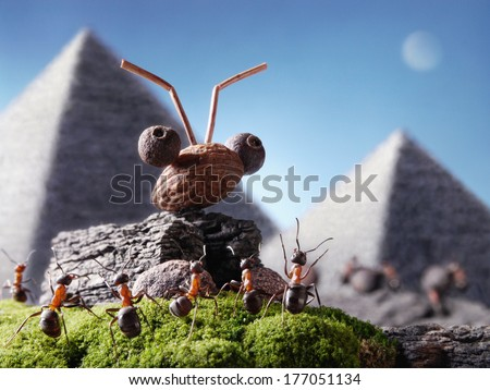 ants civilization, sphinx and pyramid, Ant Tales - stock photo
