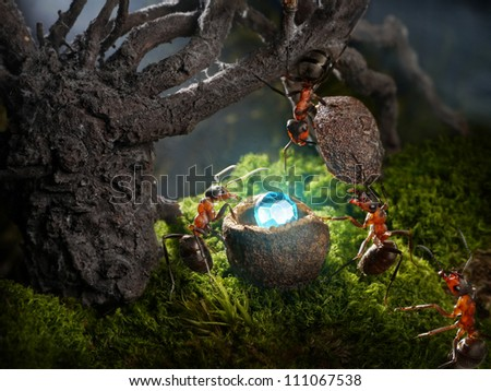 ants hide treasure diamond at night, ant tales - stock photo