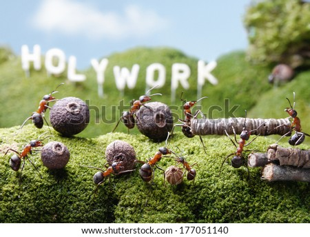 ants teamwork at Holywork hills, Ant Tales - stock photo