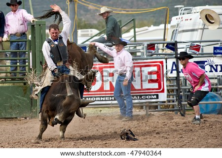 APACHE JUNCTION, AZ - FEBRUARY 26: A cowboy rides a bucking bull in the bull riding competition at the Lost Dutchman Days Rodeo on February 26, 2010 in Apache Junction, Arizona.