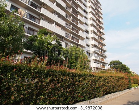 Apartment and hedge - stock photo