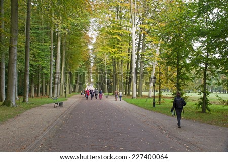 Apeldoorn, Netherlands - October 31, 2014: beech avenue leading to Het Loo Palace in Apeldoorn. - stock photo