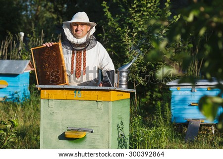 Apiarist wearing on white pants and shirt and a protective hat posing with frame of honeycomb near the apiary in the springtime - stock photo