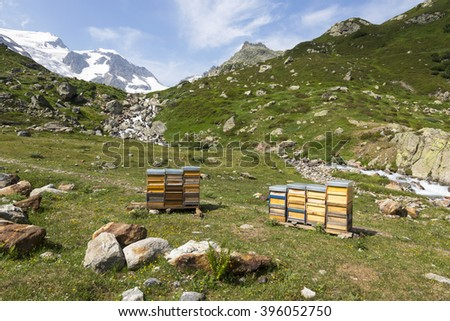 Apiary in the Alps in Switzerland - stock photo