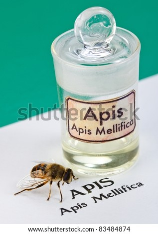 Apis Mellifica sheet, the real bee and poison extract in glass bottle - stock photo