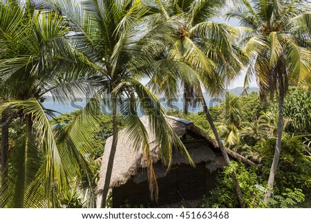 Apoyo Lagoon, Nicaragua - June 2016. Palm trees, water and bungalows at Selva Azul Resort