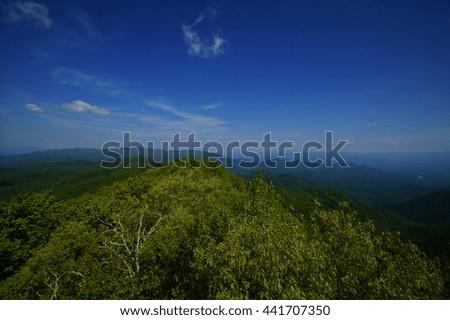 Appalachian Trail Appalachian Trail, Appalachian Mountains, North Carolina - stock photo