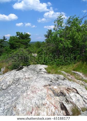 Appalachian Trail in New Jersey - stock photo