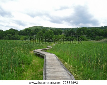 Appalachian Trail in New Jersey - stock photo