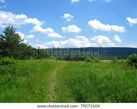 Appalachian Trail in Pennsylvania - stock photo