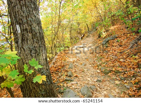 Appalachian Trail marker in fall - stock photo