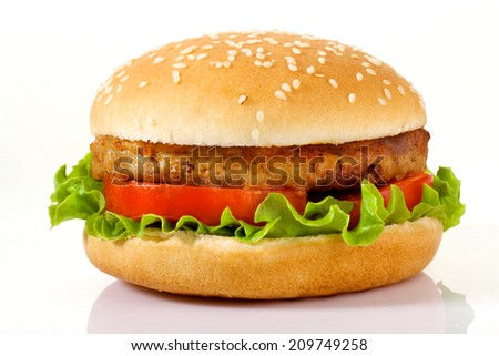 Appetizing burger isolated on white background - stock photo