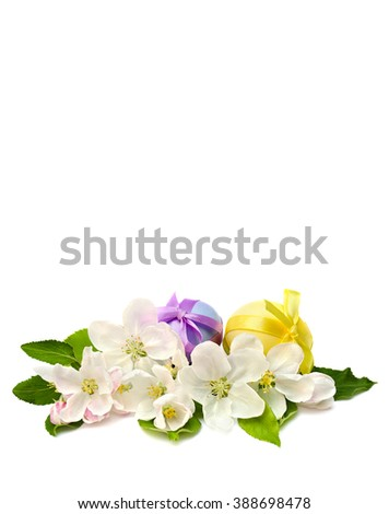Apple blossom and Easter eggs on a white background with space for text. - stock photo