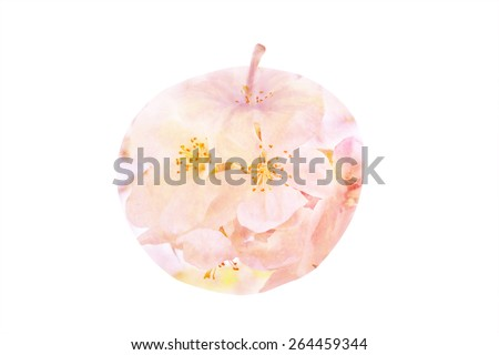 Apple double exposure flowers. Organic. Happiness. Ecological - stock photo