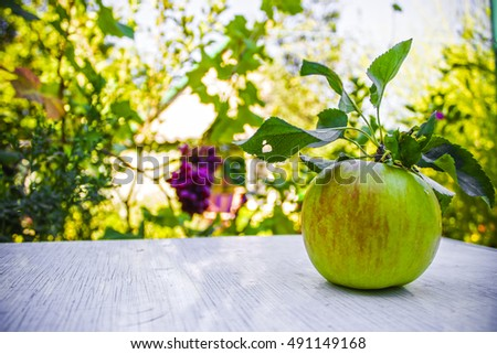 apple on a table in the garden, harvest, nature background