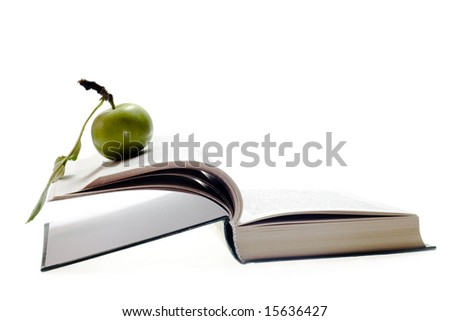 apple on book - stock photo