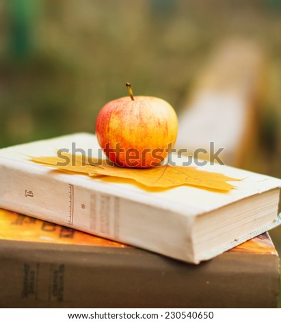 apple on book on wooden bench autumn background - stock photo