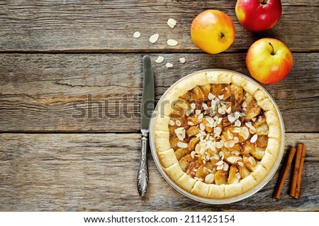 Apple pie with cinnamon on a dark wood background. toning. selective focus on the middle of the pie - stock photo