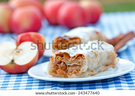 Apple strudel - apple cake  - stock photo