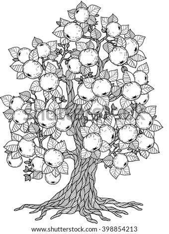 Apple Tree Coloring Book For Adult Doodles Meditation Raster Copy