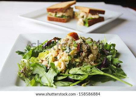 apple tuna salad  - stock photo