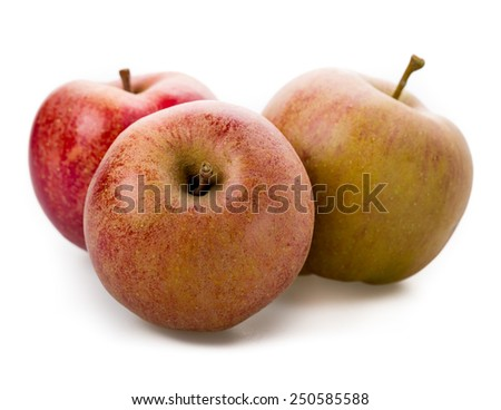 Apple variety, Boskoop isolated on white background