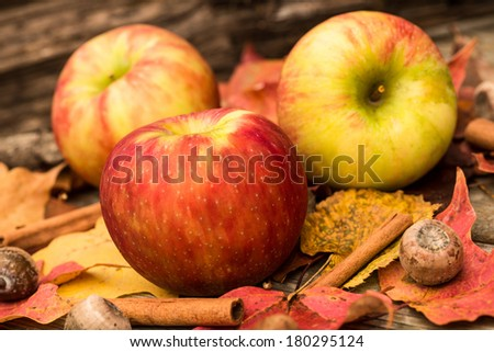 Apples and Fall leaves in Autumn - stock photo