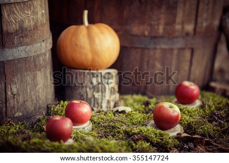 Apples and pumpkin on green moss
