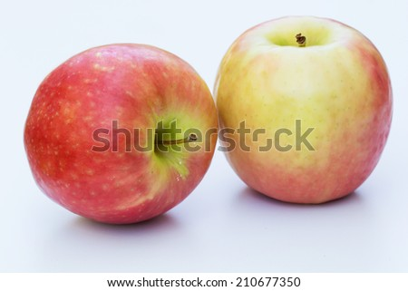 Apples From The Garden - stock photo