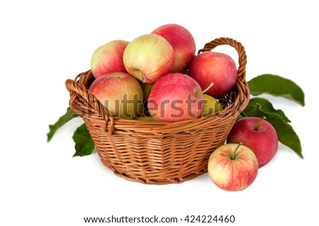 Apples in a basket on a white background