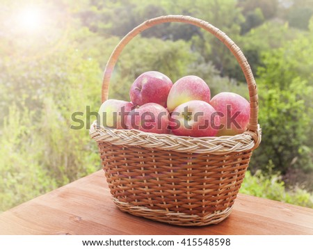 apples in a basket on wooden table against garden background at sunny day - stock photo