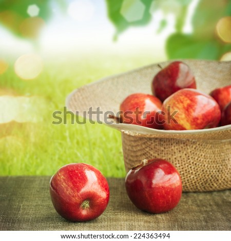 Apples in a straw hat - stock photo