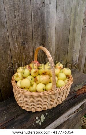 Apples in a wicker basket - stock photo
