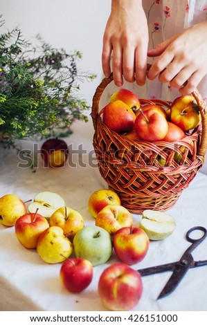 Apples  on white table. Sweet apples on table on bright background. basket with ripe tasty apples on white table. White table full of freshly harvested red apples with a halved apple on display