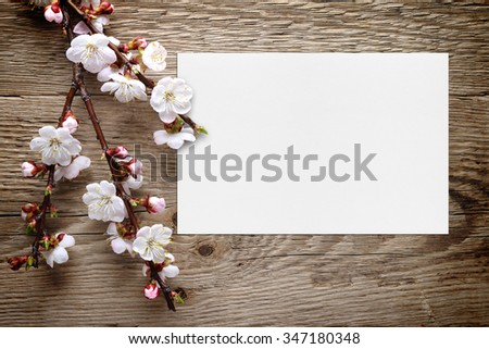 Apricot blossom and greeting card on wooden background - stock photo