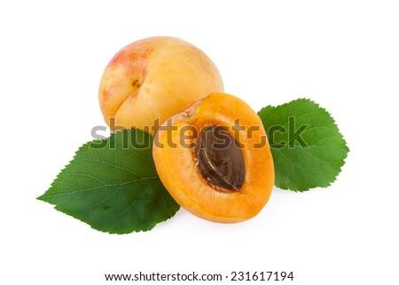 apricot fruit isolated on white - stock photo