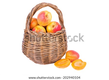 apricot in basket isolated on white background - stock photo