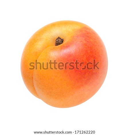 Apricot on a white background - stock photo
